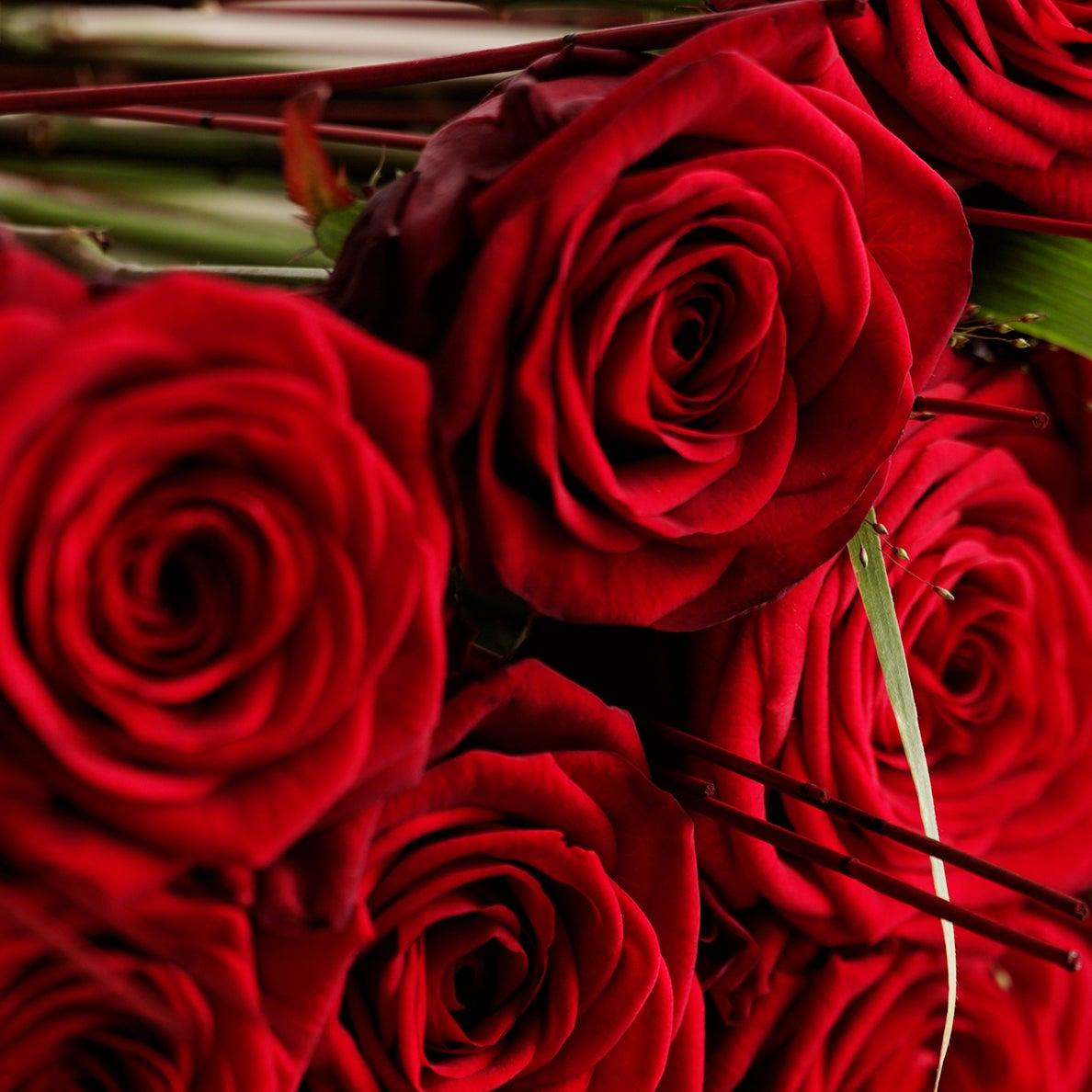Afskårne Roser røde roser 40-60 cm pr. stk. | interflora danmark